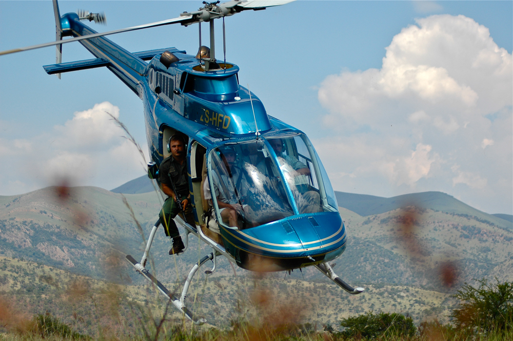Helicopter wildlife game capture and darting in South Africa
