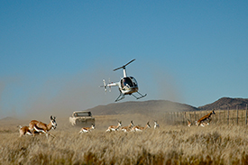 Helicopter Wildlife Management